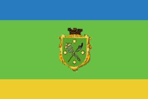 דגל העיר