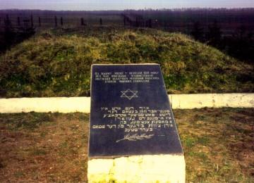 ברדיטשוב בשואה