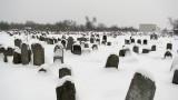 Єврейське_кладовище,_Бердичів