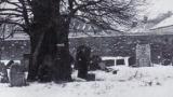 בית העלמין הישן לפני שנהרס, מצבת רבי ליבר מימין לעץ. צילום: משלחת אנסקי